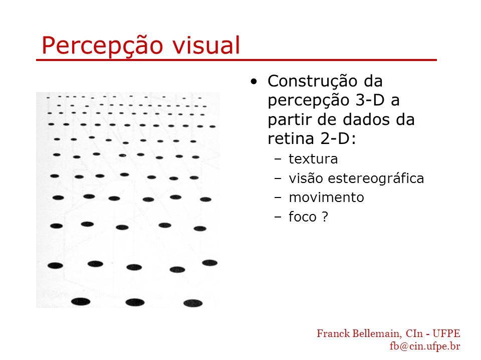 Franck Bellemain, CIn - UFPE fb@cin.ufpe.br Percepção visual Construção da percepção 3-D a partir de dados da retina 2-D: –textura –visão estereográfi