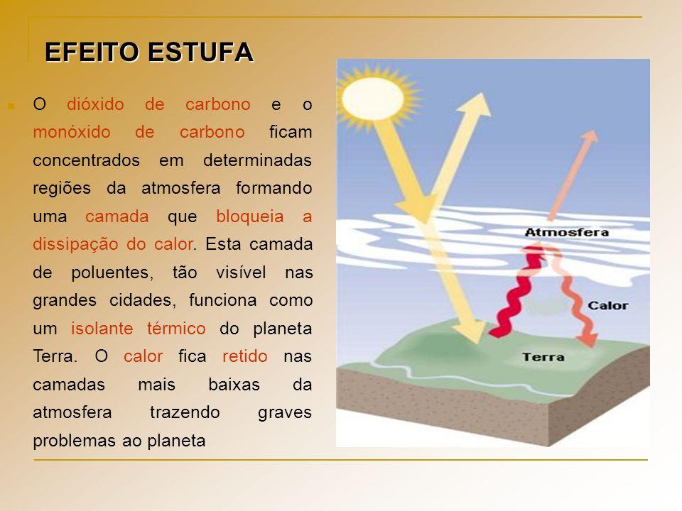 EFEITO ESTUFA O dióxido de carbono e o monóxido de carbono ficam concentrados em determinadas regiões da atmosfera formando uma camada que bloqueia a