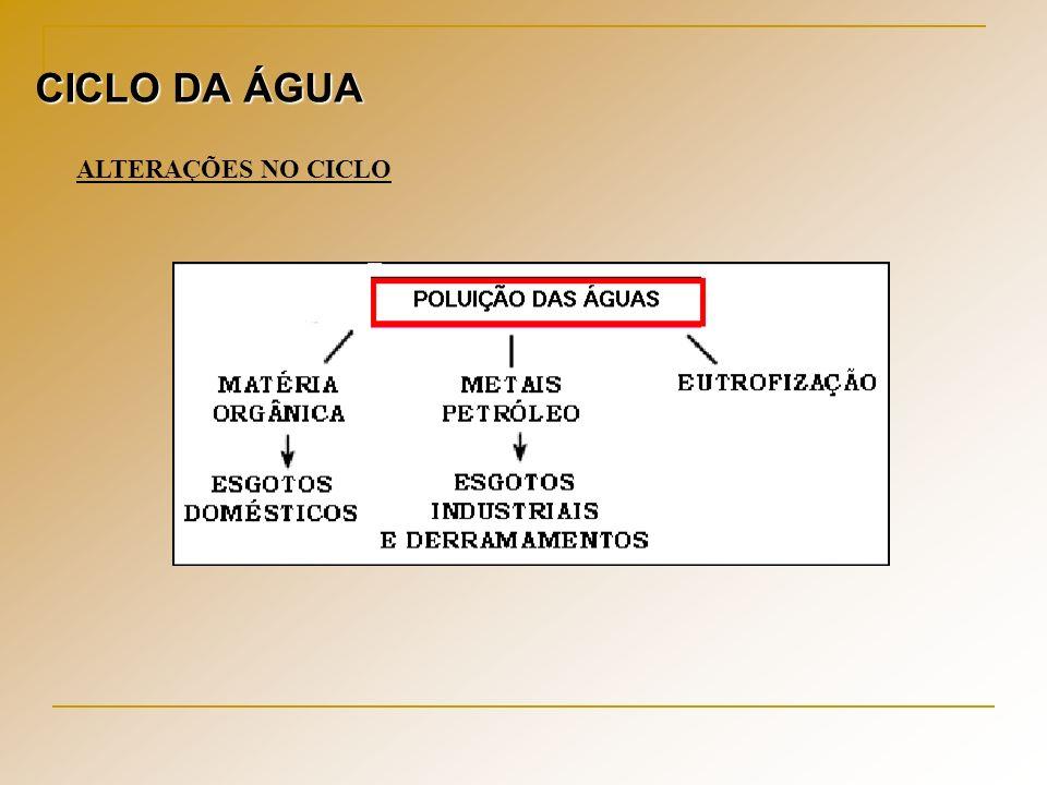 CICLO DA ÁGUA ALTERAÇÕES NO CICLO