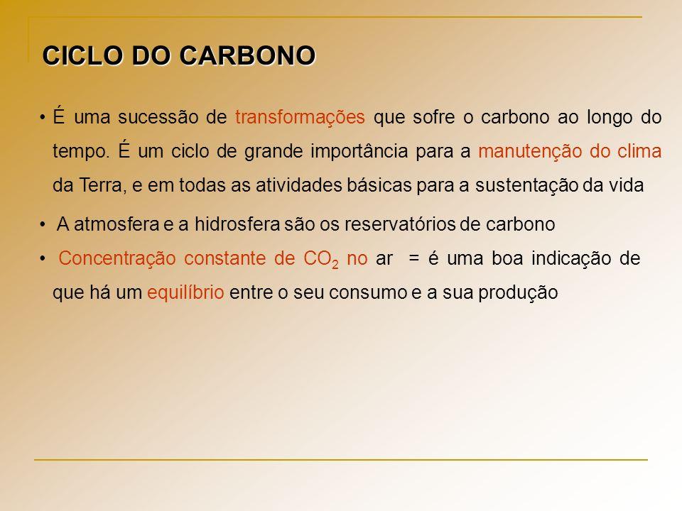 CICLO DO CARBONO É uma sucessão de transformações que sofre o carbono ao longo do tempo. É um ciclo de grande importância para a manutenção do clima d
