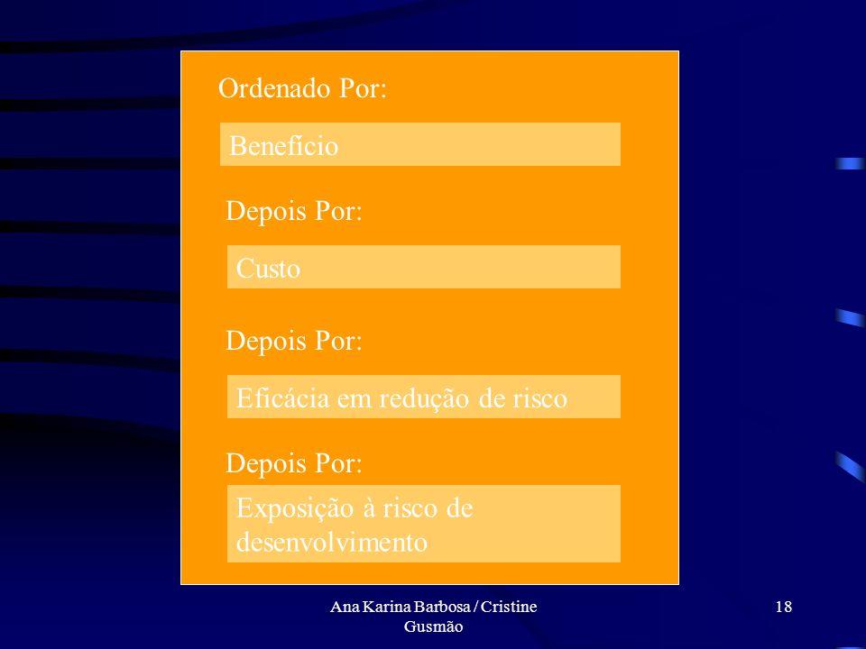 Ana Karina Barbosa / Cristine Gusmão 17 9. Criar planejamento de controle de risco técnico para os riscos aceitáveis Riscos sistema corrente Riscos si
