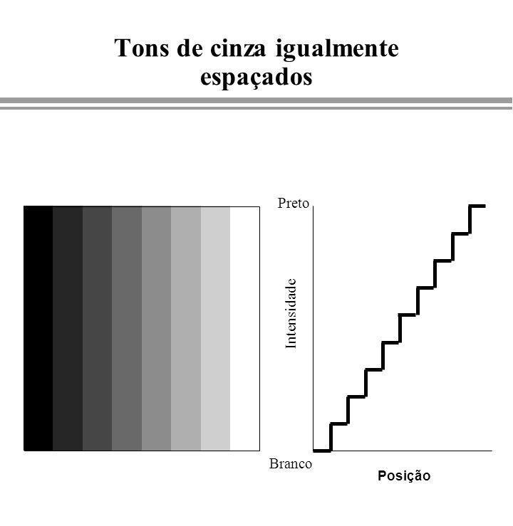 Tons de cinza igualmente espaçados Branco Preto Intensidade Posição