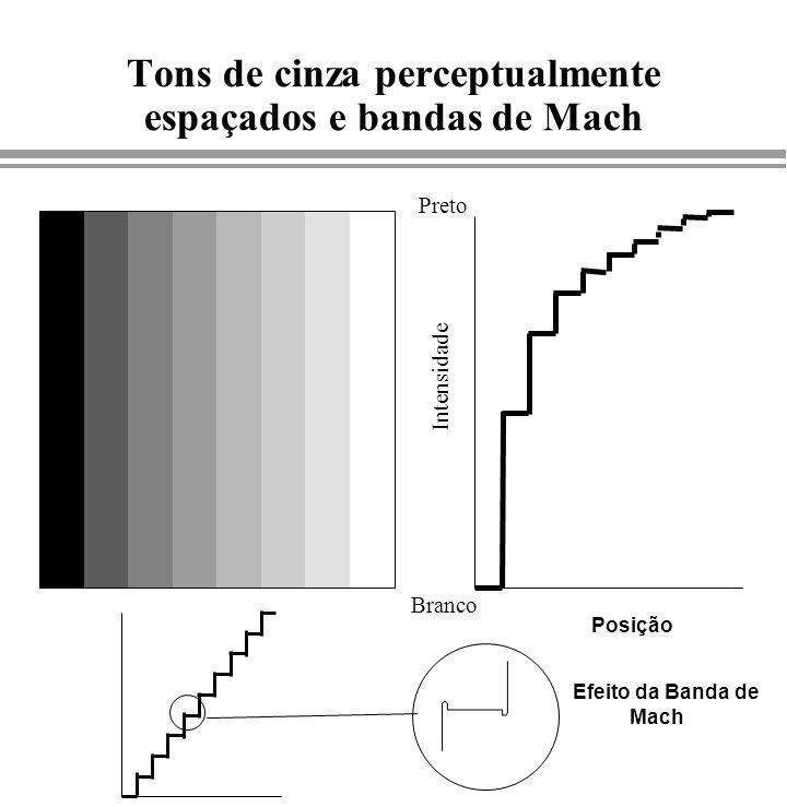 Tons de cinza perceptualmente espaçados e bandas de Mach Branco Preto Intensidade Posição Efeito da Banda de Mach