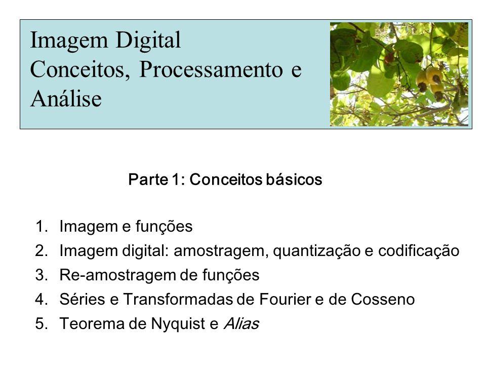 Imagem Digital Conceitos, Processamento e Análise 1.Imagem e funções 2.Imagem digital: amostragem, quantização e codificação 3.Re-amostragem de funçõe
