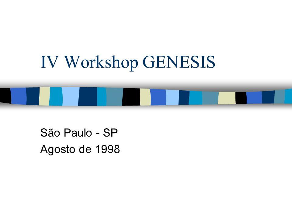 IV Workshop GENESIS São Paulo - SP Agosto de 1998