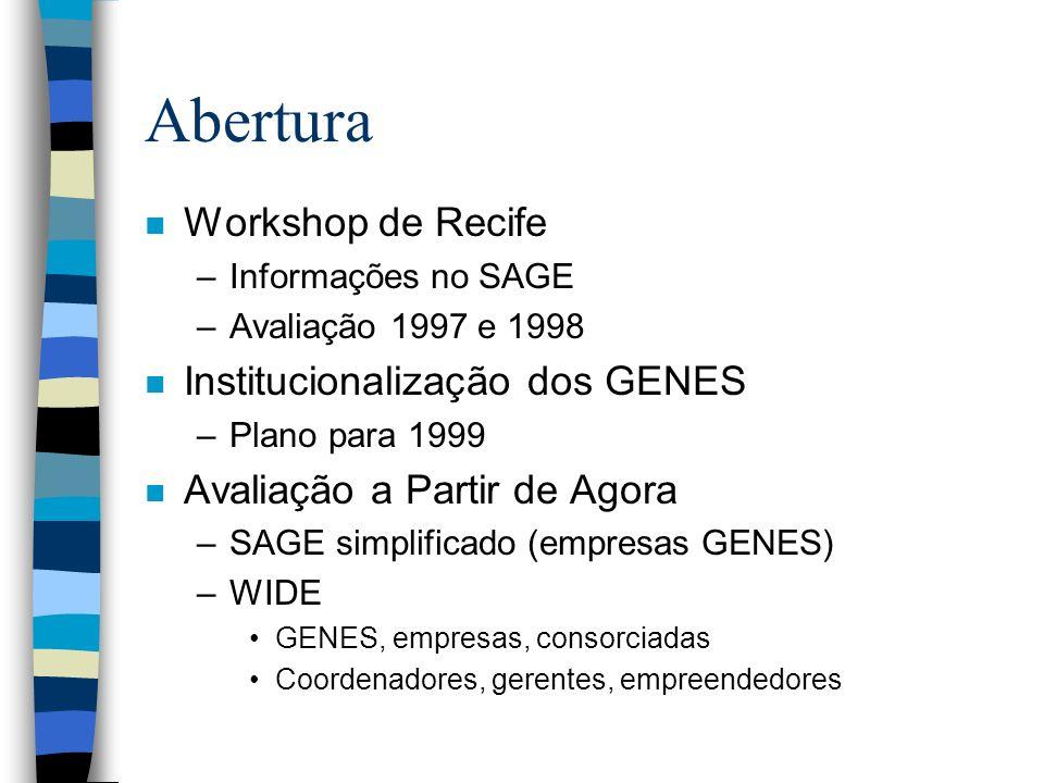 Abertura n Workshop de Recife –Informações no SAGE –Avaliação 1997 e 1998 n Institucionalização dos GENES –Plano para 1999 n Avaliação a Partir de Agora –SAGE simplificado (empresas GENES) –WIDE GENES, empresas, consorciadas Coordenadores, gerentes, empreendedores