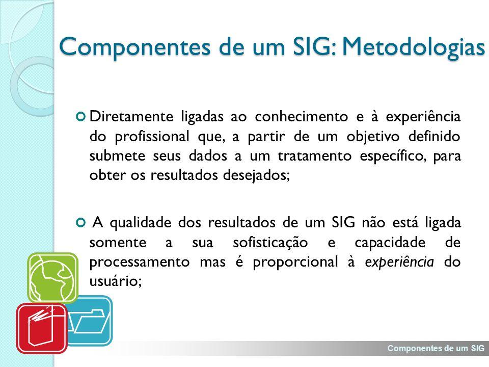 Componentes de um SIG: Metodologias Diretamente ligadas ao conhecimento e à experiência do profissional que, a partir de um objetivo definido submete seus dados a um tratamento específico, para obter os resultados desejados; A qualidade dos resultados de um SIG não está ligada somente a sua sofisticação e capacidade de processamento mas é proporcional à experiência do usuário; Componentes de um SIG