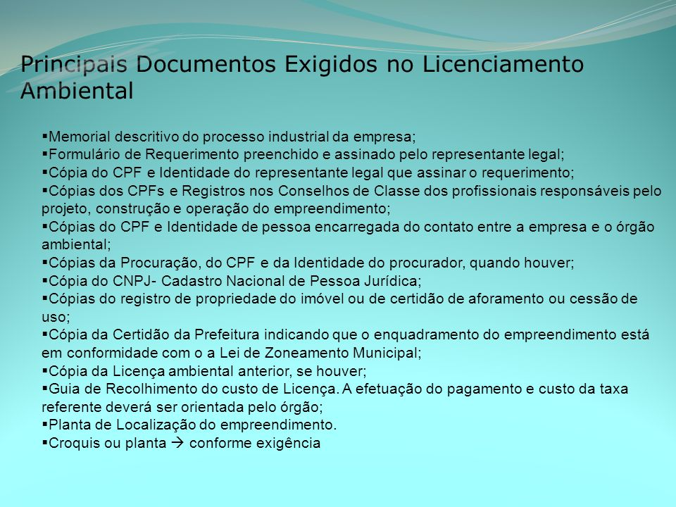Principais Documentos Exigidos no Licenciamento Ambiental Memorial descritivo do processo industrial da empresa; Formulário de Requerimento preenchido