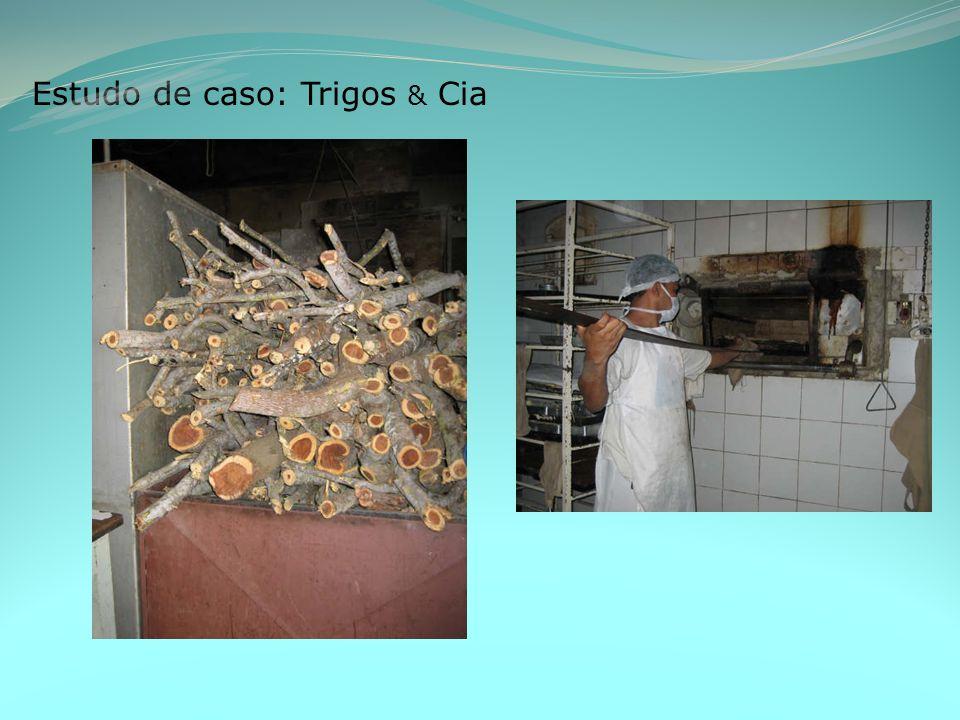 Estudo de caso: Trigos & Cia