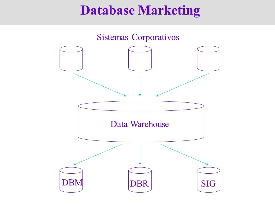 Database Marketing Data Warehouse Sistemas Corporativos DBM DBR SIG