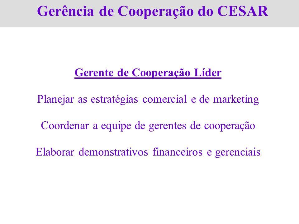 Gerência de Cooperação do CESAR Gerente de Cooperação Líder Planejar as estratégias comercial e de marketing Coordenar a equipe de gerentes de coopera