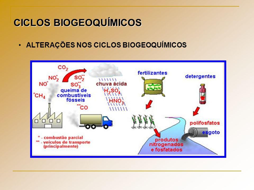 CICLOS BIOGEOQUÍMICOS ALTERAÇÕES NOS CICLOS BIOGEOQUÍMICOS
