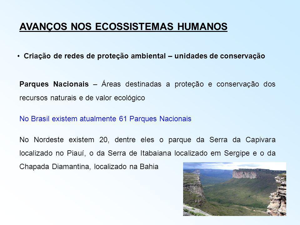 AVANÇOS NOS ECOSSISTEMAS HUMANOS Criação de redes de proteção ambiental – unidades de conservação Parques Nacionais – Áreas destinadas a proteção e co
