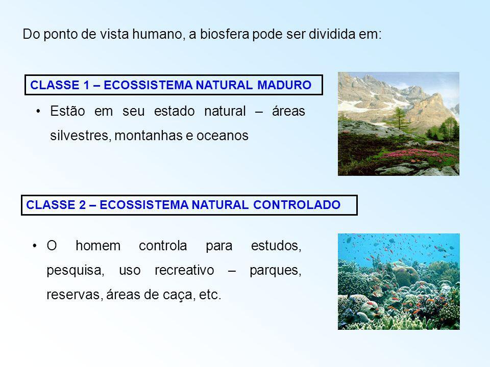 Estão em seu estado natural – áreas silvestres, montanhas e oceanos CLASSE 1 – ECOSSISTEMA NATURAL MADURO CLASSE 2 – ECOSSISTEMA NATURAL CONTROLADO O