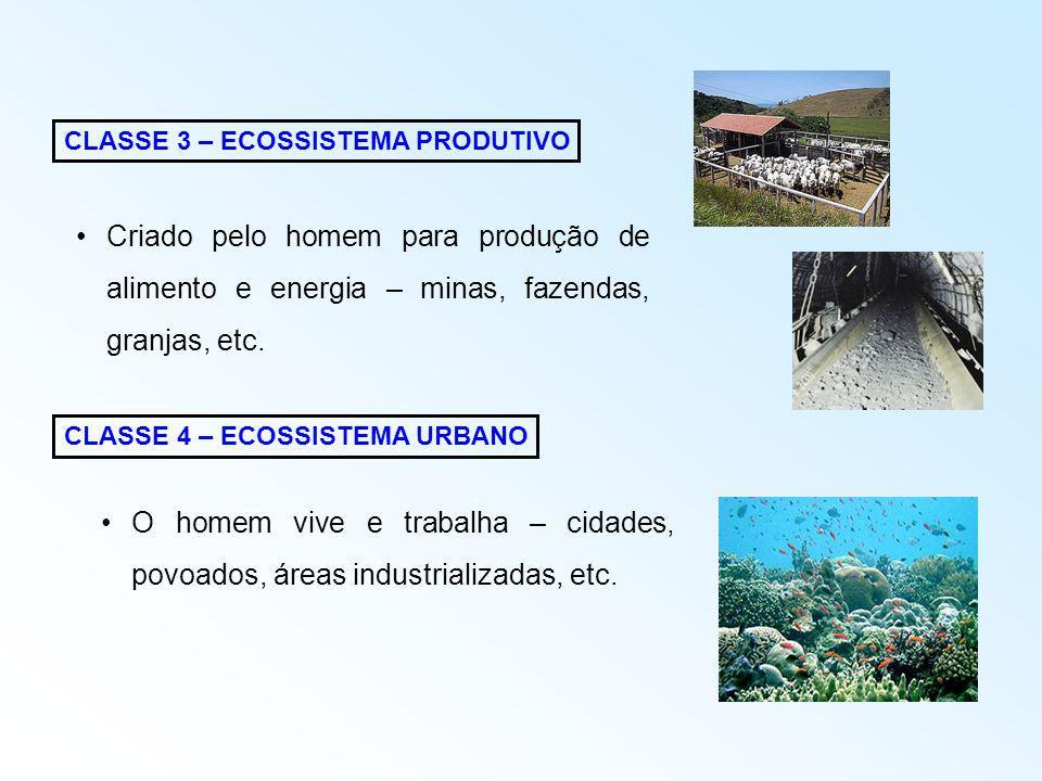 AVANÇOS NOS ECOSSISTEMAS HUMANOS Parques Estaduais – Áreas destinadas a proteção e conservação dos recursos naturais e de valor ecológico No Brasil existem atualmente 183 Parques Estaduais, sendo 4 na Paraíba