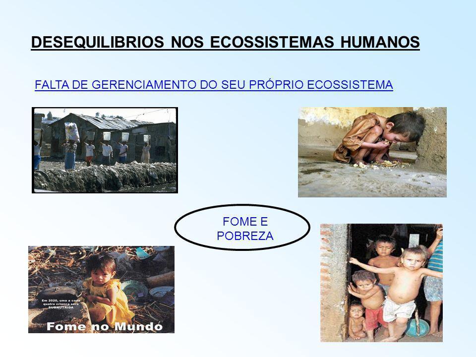 DESEQUILIBRIOS NOS ECOSSISTEMAS HUMANOS FALTA DE GERENCIAMENTO DO SEU PRÓPRIO ECOSSISTEMA FOME E POBREZA