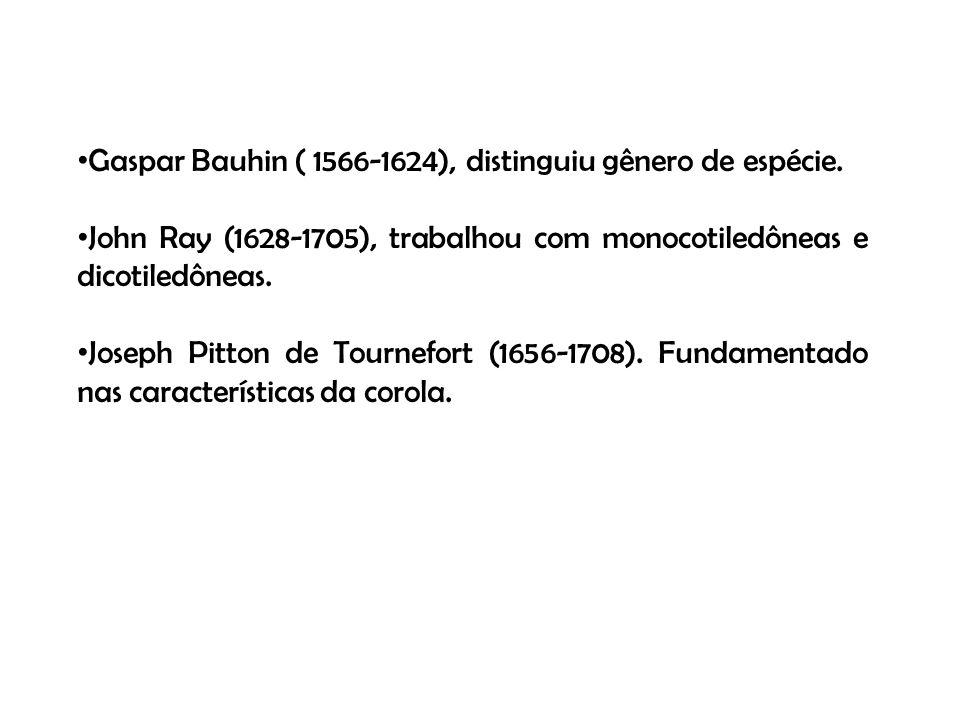 Gaspar Bauhin ( 1566-1624), distinguiu gênero de espécie. John Ray (1628-1705), trabalhou com monocotiledôneas e dicotiledôneas. Joseph Pitton de Tour