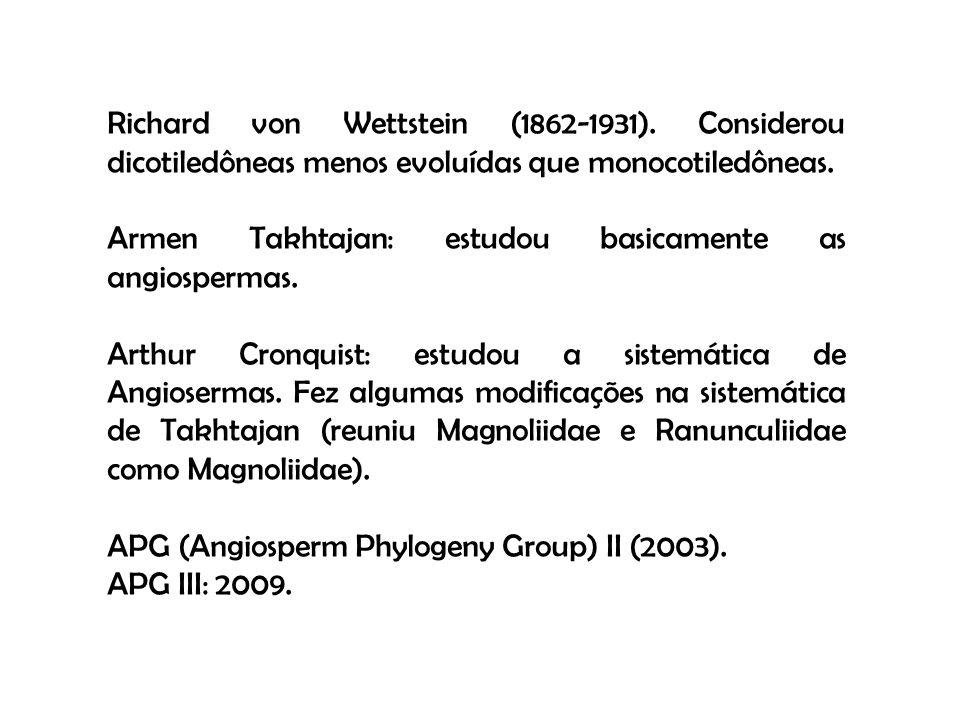 Richard von Wettstein (1862-1931). Considerou dicotiledôneas menos evoluídas que monocotiledôneas. Armen Takhtajan: estudou basicamente as angiosperma