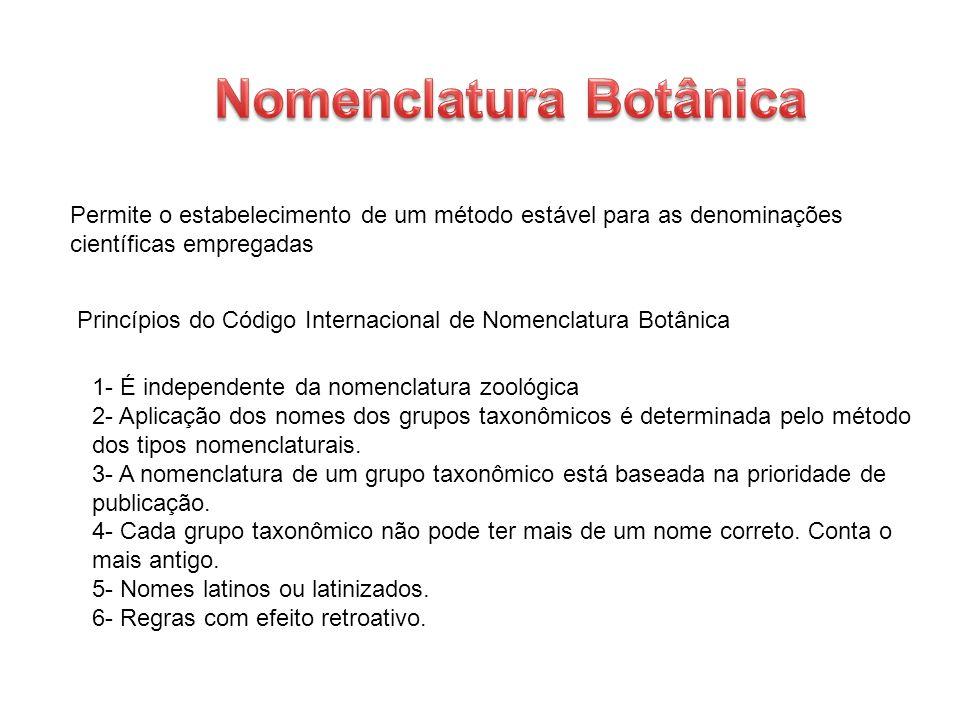 Permite o estabelecimento de um método estável para as denominações científicas empregadas Princípios do Código Internacional de Nomenclatura Botânica