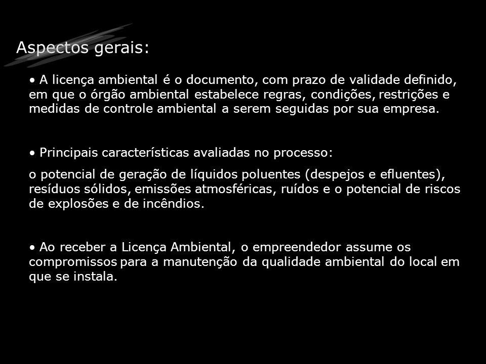 Passos para o requerimento da licença Identificar o Tipo de Licença a ser Requerida Identificar a quem pedir a licença Solicitar ao Órgão Estadual o Cadastro de Atividade Industrial.