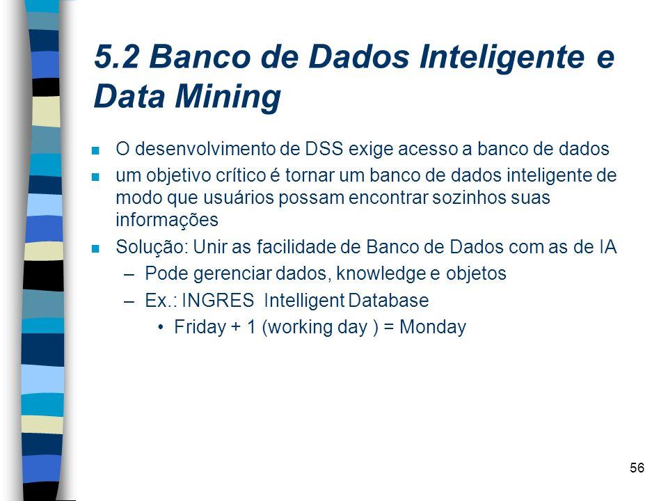 56 5.2 Banco de Dados Inteligente e Data Mining n O desenvolvimento de DSS exige acesso a banco de dados n um objetivo crítico é tornar um banco de da