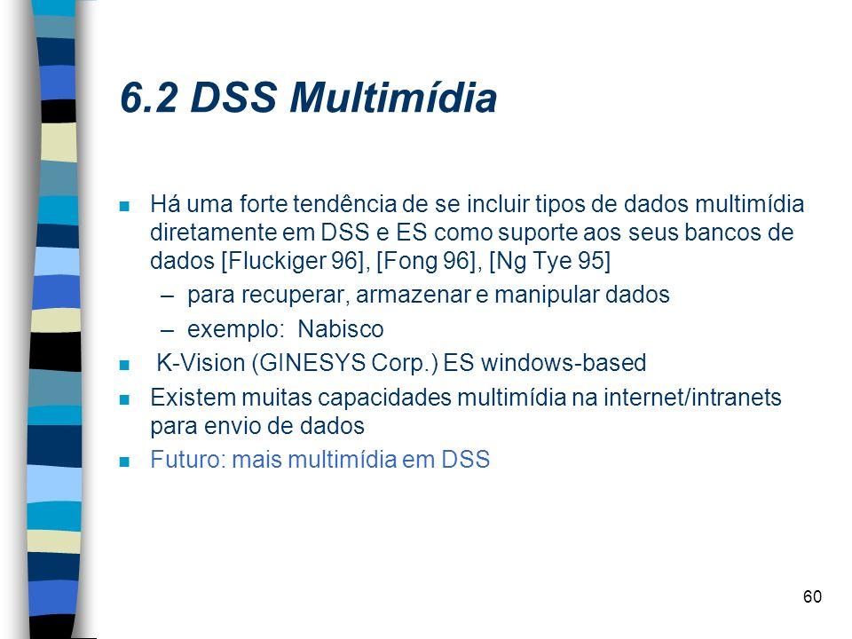 60 6.2 DSS Multimídia n Há uma forte tendência de se incluir tipos de dados multimídia diretamente em DSS e ES como suporte aos seus bancos de dados [