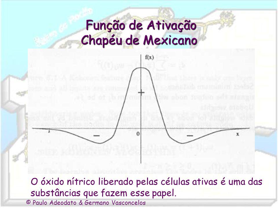 © Paulo Adeodato & Germano Vasconcelos Função de Ativação Chapéu de Mexicano Função de Ativação Chapéu de Mexicano O óxido nítrico liberado pelas célu