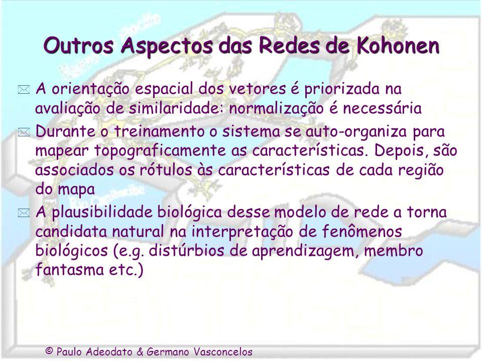 © Paulo Adeodato & Germano Vasconcelos Outros Aspectos das Redes de Kohonen * A orientação espacial dos vetores é priorizada na avaliação de similarid