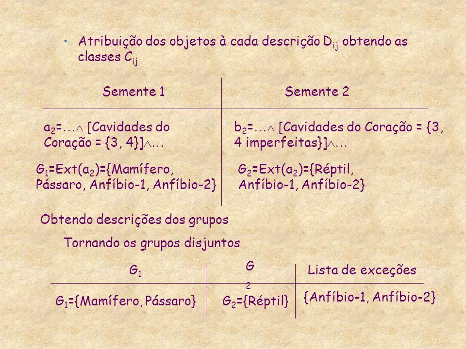 Atribuição dos objetos à cada descrição D ij obtendo as classes C ij a 2 = [Cavidades do Coração = {3, 4}] b 2 = [Cavidades do Coração = {3, 4 imperfe