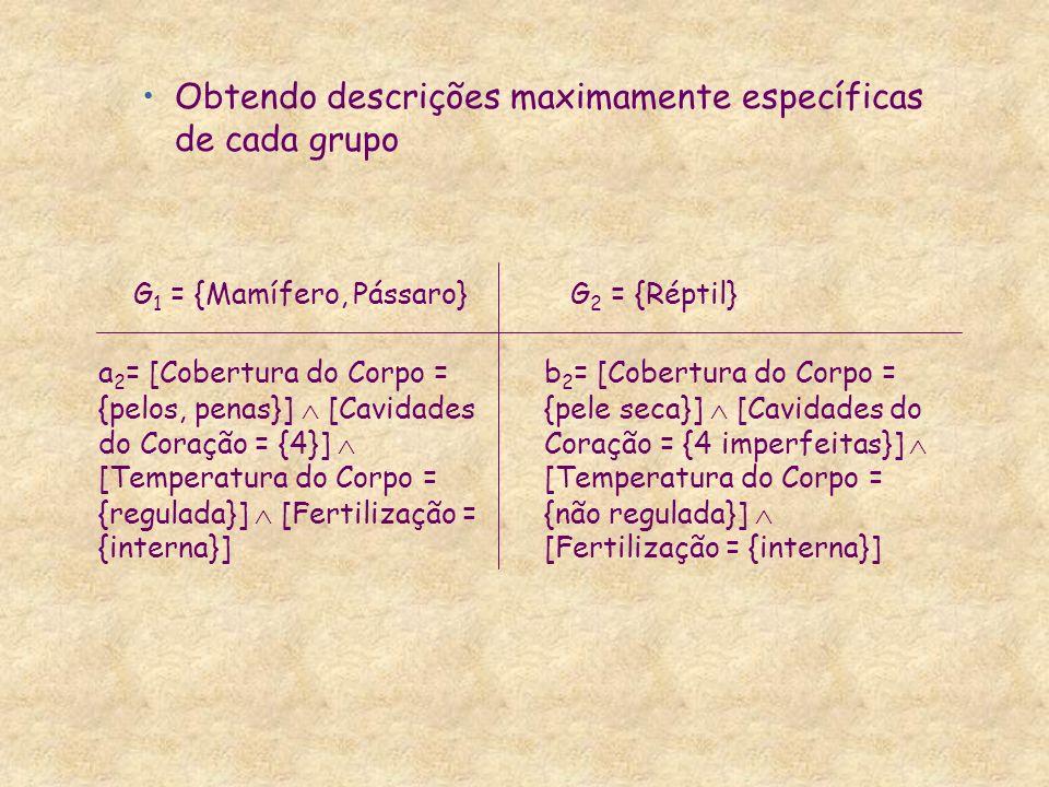 Obtendo descrições maximamente específicas de cada grupo a 2 = [Cobertura do Corpo = {pelos, penas}] [Cavidades do Coração = {4}] [Temperatura do Corp