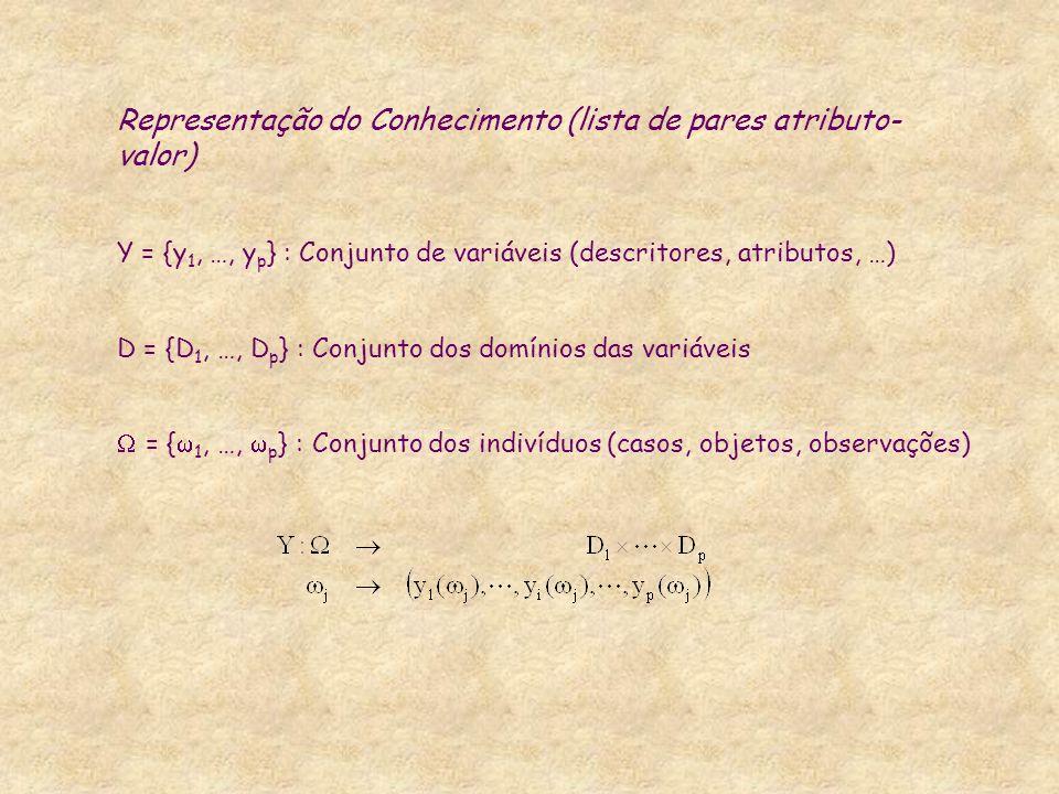 Representação do Conhecimento (lista de pares atributo- valor) Y = {y 1, …, y p } : Conjunto de variáveis (descritores, atributos, …) D = {D 1, …, D p