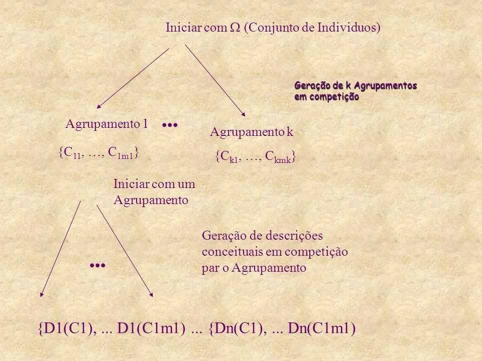 Geração de k Agrupamentos em competição Iniciar com (Conjunto de Individuos) Agrupamento 1 Agrupamento k {C 11, …, C 1m1 } {C k1, …, C kmk } Iniciar com um Agrupamento Geração de descrições conceituais em competição par o Agrupamento {D1(C1),...