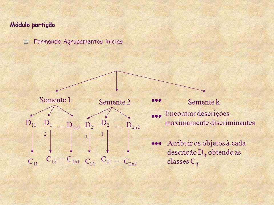 Módulo partição * Formando Agrupamentos inicias Semente 1 Semente 2Semente k D 11 D12D12 D 1n1 D21D21 D21D21 D 2n2 …… Encontrar descrições maximamente discriminantes Atribuir os objetos à cada descrição D ij obtendo as classes C ij C 11 C 12 … C 1n1 C 21 … C 2n2