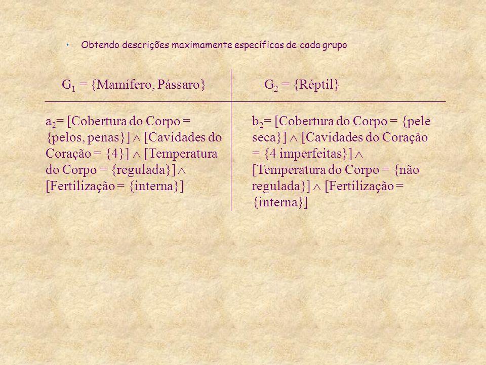 Obtendo descrições maximamente específicas de cada grupo a 2 = [Cobertura do Corpo = {pelos, penas}] [Cavidades do Coração = {4}] [Temperatura do Corpo = {regulada}] [Fertilização = {interna}] G 1 = {Mamífero, Pássaro}G 2 = {Réptil} b 2 = [Cobertura do Corpo = {pele seca}] [Cavidades do Coração = {4 imperfeitas}] [Temperatura do Corpo = {não regulada}] [Fertilização = {interna}]