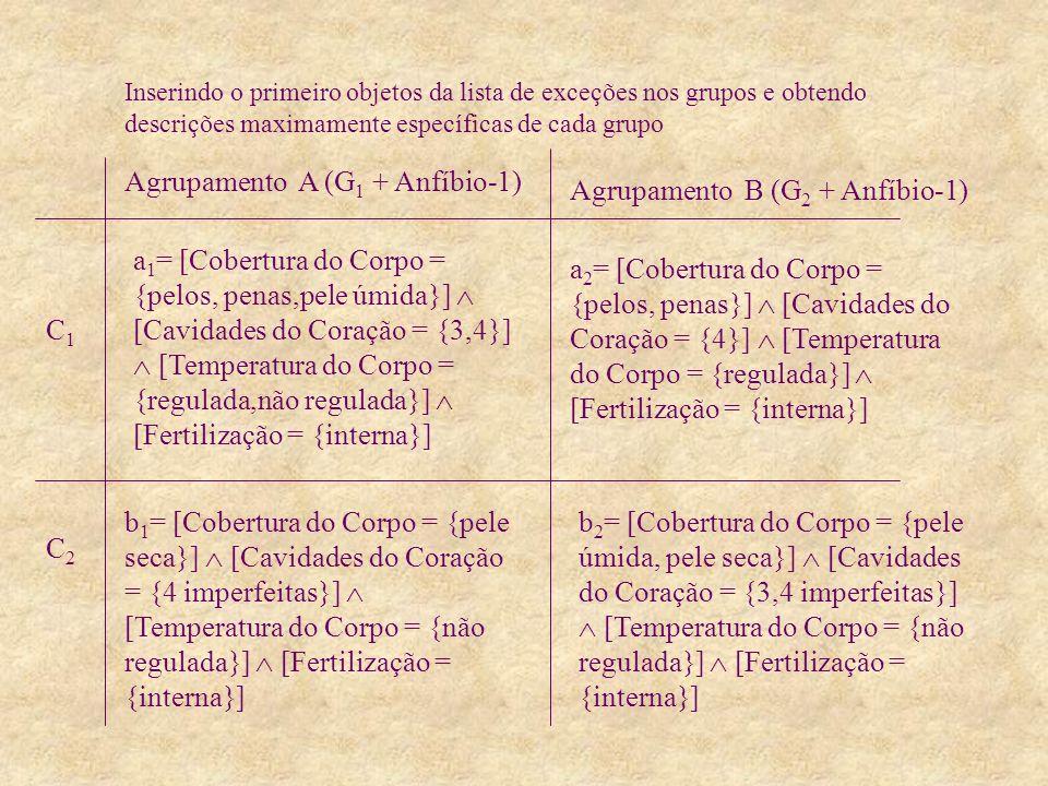 a 1 = [Cobertura do Corpo = {pelos, penas,pele úmida}] [Cavidades do Coração = {3,4}] [Temperatura do Corpo = {regulada,não regulada}] [Fertilização = {interna}] Agrupamento A (G 1 + Anfíbio-1) C1C1 C2C2 Agrupamento B (G 2 + Anfíbio-1) b 1 = [Cobertura do Corpo = {pele seca}] [Cavidades do Coração = {4 imperfeitas}] [Temperatura do Corpo = {não regulada}] [Fertilização = {interna}] a 2 = [Cobertura do Corpo = {pelos, penas}] [Cavidades do Coração = {4}] [Temperatura do Corpo = {regulada}] [Fertilização = {interna}] b 2 = [Cobertura do Corpo = {pele úmida, pele seca}] [Cavidades do Coração = {3,4 imperfeitas}] [Temperatura do Corpo = {não regulada}] [Fertilização = {interna}] Inserindo o primeiro objetos da lista de exceções nos grupos e obtendo descrições maximamente específicas de cada grupo