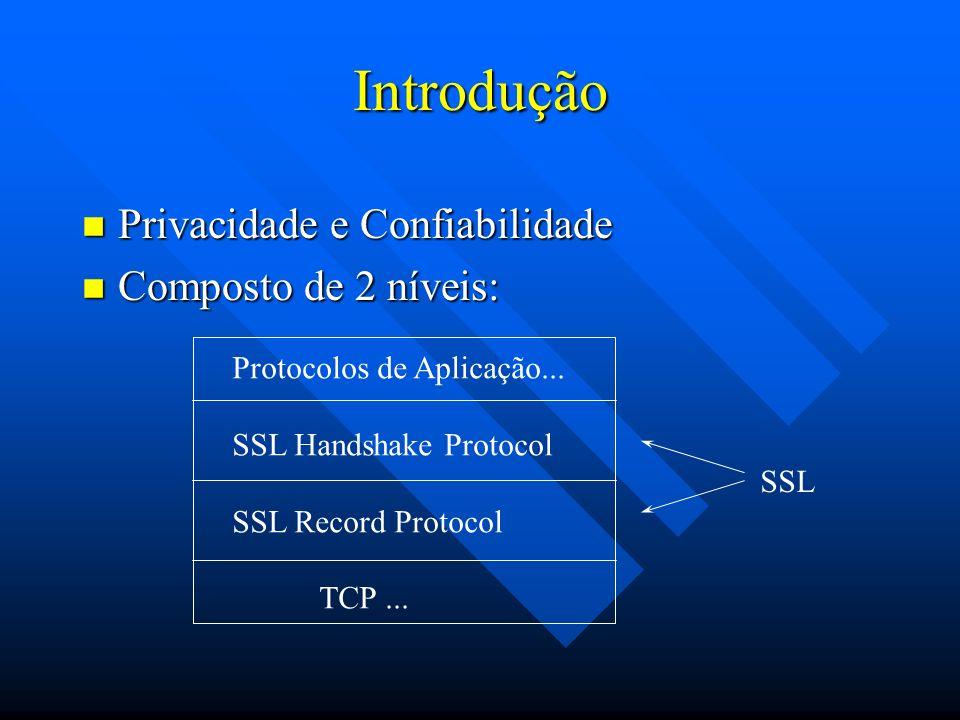 Propiedades da Conexão SSL n Privada.