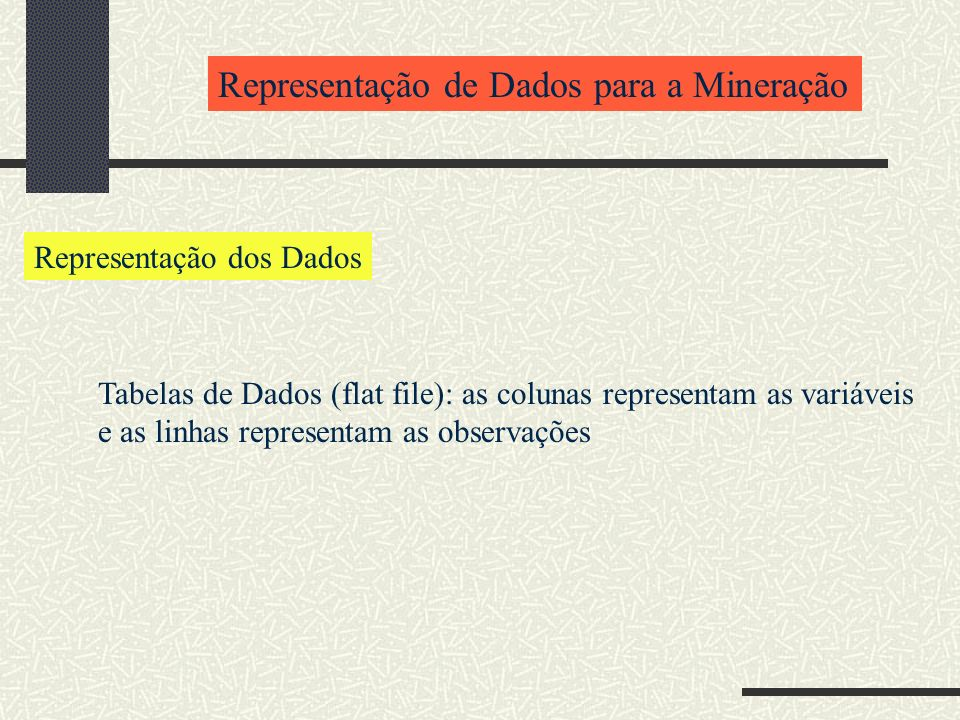 Representação de Dados para a Mineração Representação dos Dados Tabelas de Dados (flat file): as colunas representam as variáveis e as linhas representam as observações