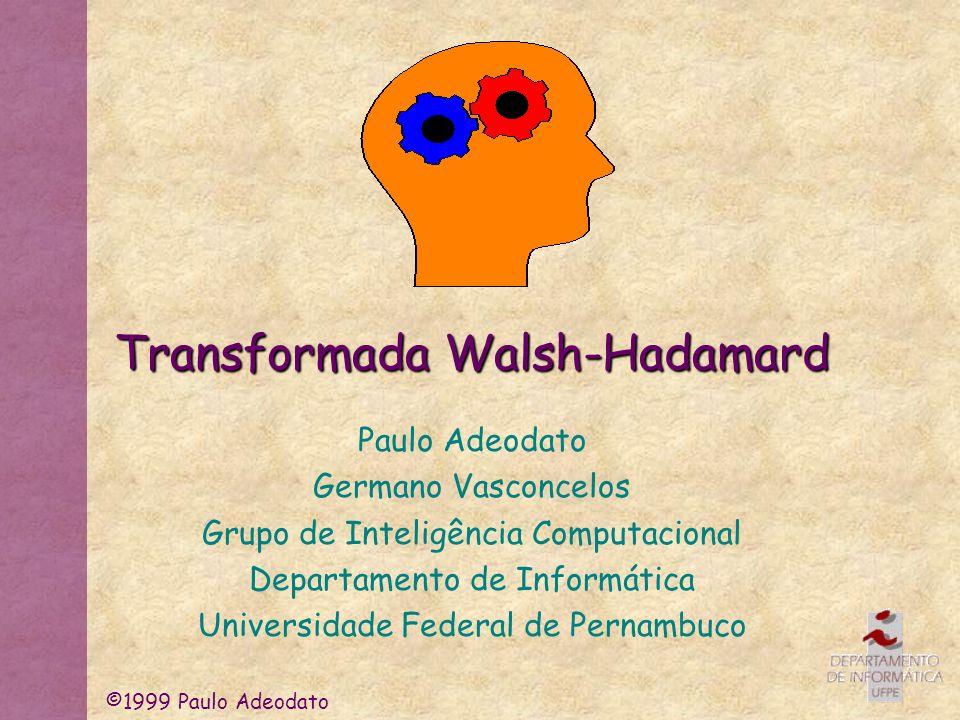 ©1999 Paulo Adeodato Tipos de Transformações de Imagens * Determinísticas Globais (Fourier, Walsh-Hadamard, Haar etc.) Locais (Wavelets de Gabor, edge enhancement etc.) * Estocásticas Globais (PCA, equalização de histograma etc.) Locais (Filtros de média, mediana, matriz de coocorrência etc.)