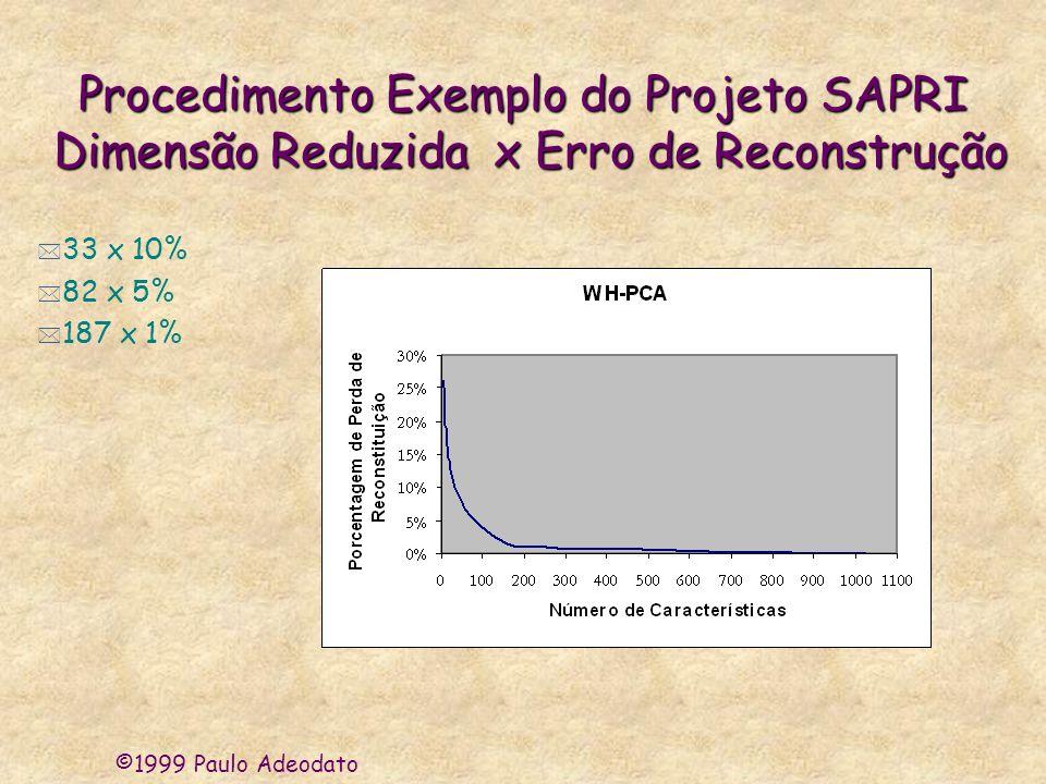 ©1999 Paulo Adeodato Procedimento Exemplo do Projeto SAPRI Dimensão Reduzida x Erro de Reconstrução * 33 x 10% * 82 x 5% * 187 x 1%