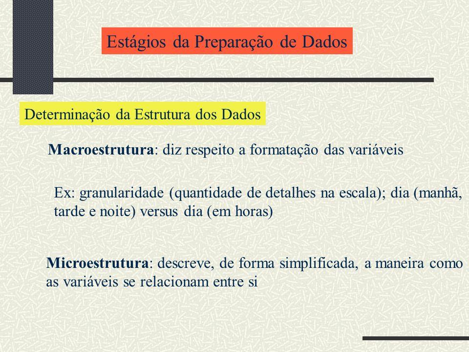 Estágios da Preparação de Dados Determinação da Estrutura dos Dados Macroestrutura: diz respeito a formatação das variáveis Ex: granularidade (quantid