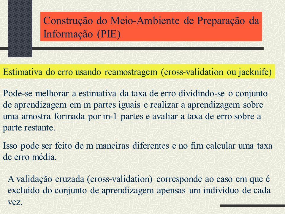 Construção do Meio-Ambiente de Preparação da Informação (PIE) Estimativa do erro usando reamostragem (cross-validation ou jacknife) Pode-se melhorar a