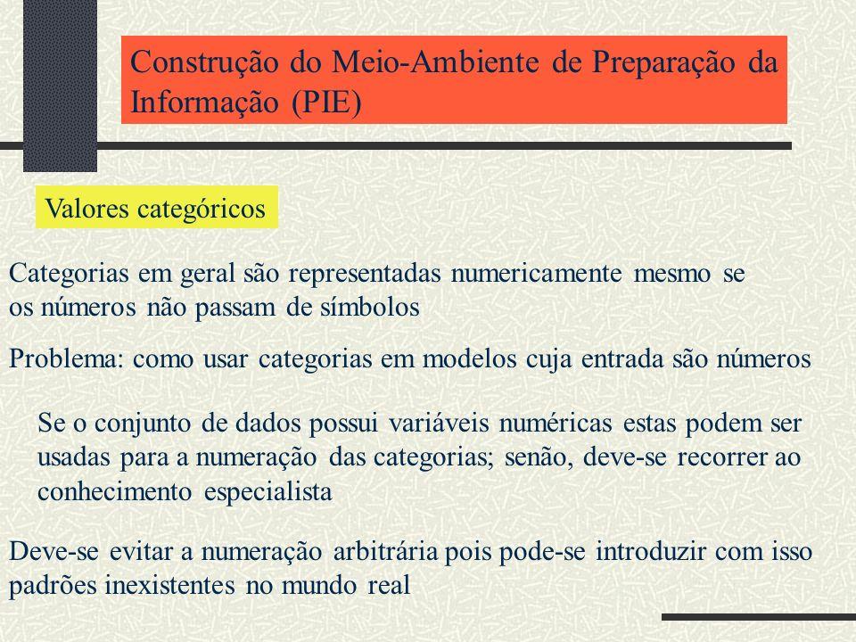 Construção do Meio-Ambiente de Preparação da Informação (PIE) Valores categóricos Categorias em geral são representadas numericamente mesmo se os núme