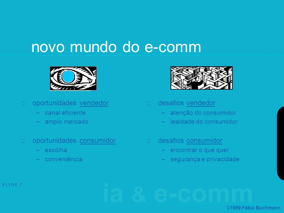 ia & e-comm S L I D E 7 ©1999 Fábio Buchmann novo mundo do e-comm oportunidades vendedor –canal eficiente –amplo mercado oportunidades consumidor –esc