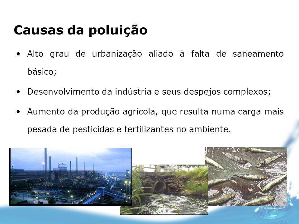 Causas da poluição Alto grau de urbanização aliado à falta de saneamento básico; Desenvolvimento da indústria e seus despejos complexos; Aumento da pr