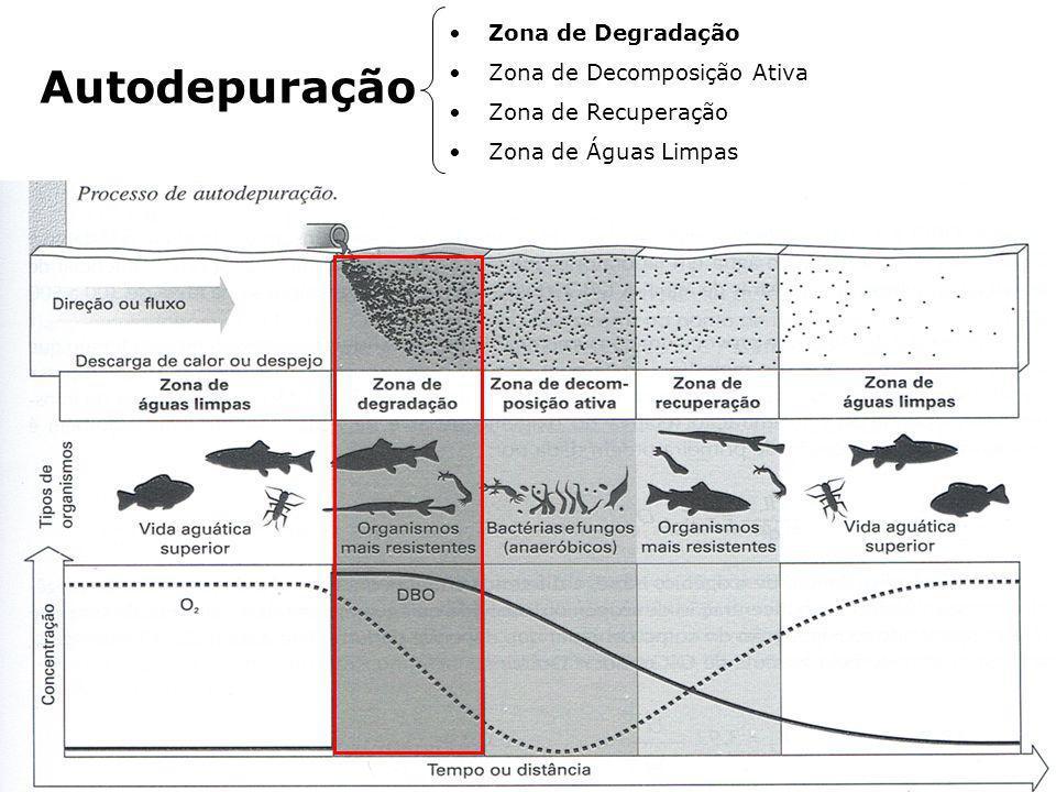 Autodepuração Zona de Degradação Zona de Decomposição Ativa Zona de Recuperação Zona de Águas Limpas