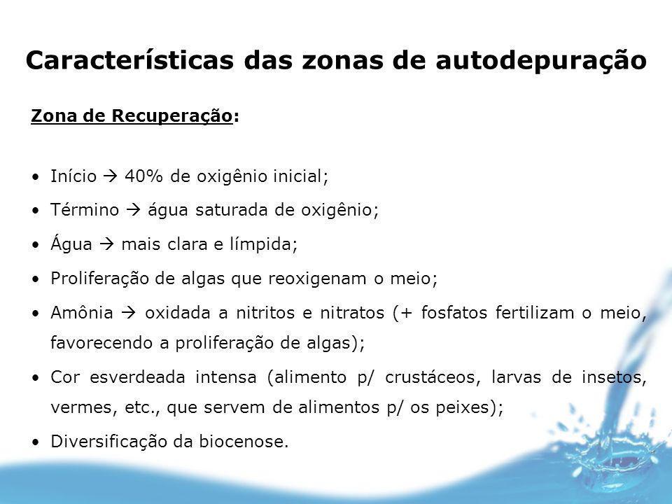Características das zonas de autodepuração Zona de Recuperação: Início 40% de oxigênio inicial; Término água saturada de oxigênio; Água mais clara e l