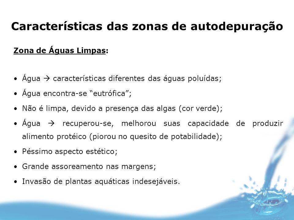 Características das zonas de autodepuração Zona de Águas Limpas: Água características diferentes das águas poluídas; Água encontra-se eutrófica; Não é