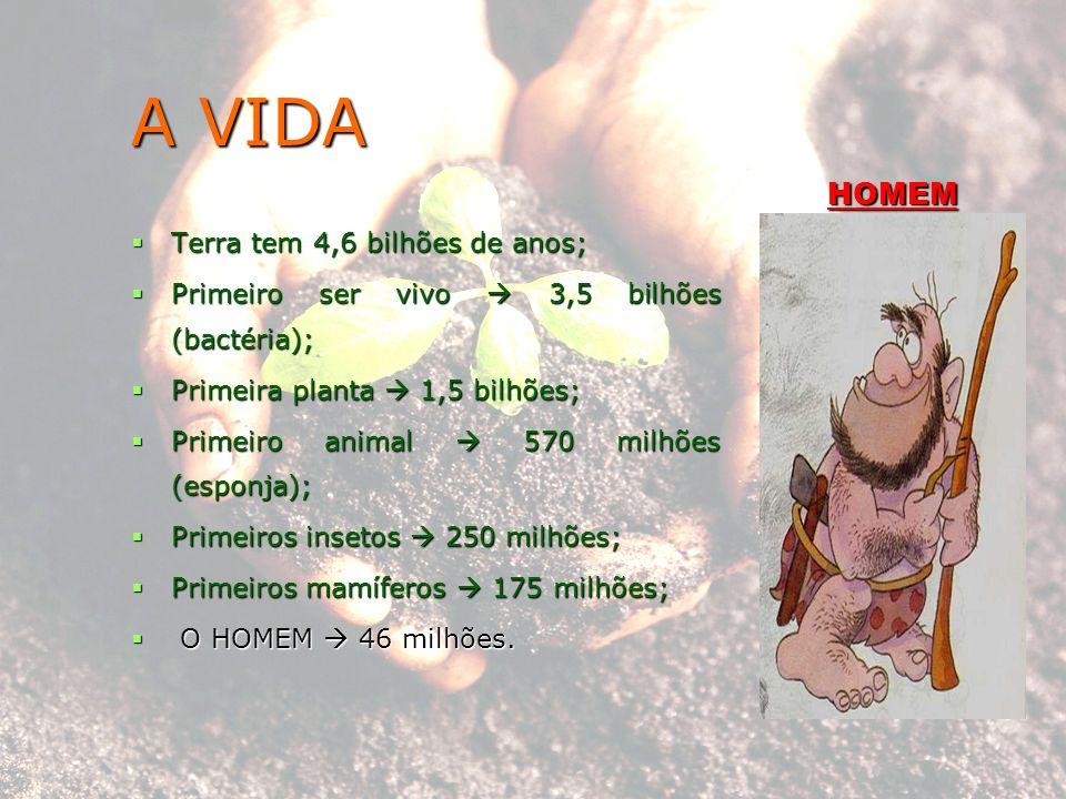 A VIDA Terra tem 4,6 bilhões de anos; Terra tem 4,6 bilhões de anos; Primeiro ser vivo 3,5 bilhões (bactéria); Primeiro ser vivo 3,5 bilhões (bactéria