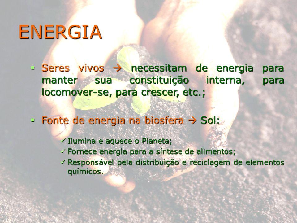 ENERGIA Seres vivos necessitam de energia para manter sua constituição interna, para locomover-se, para crescer, etc.; Seres vivos necessitam de energ