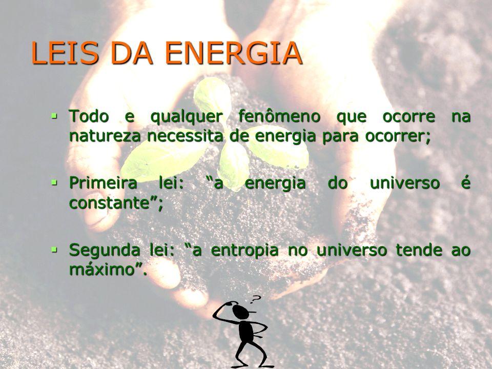 LEIS DA ENERGIA Todo e qualquer fenômeno que ocorre na natureza necessita de energia para ocorrer; Todo e qualquer fenômeno que ocorre na natureza nec